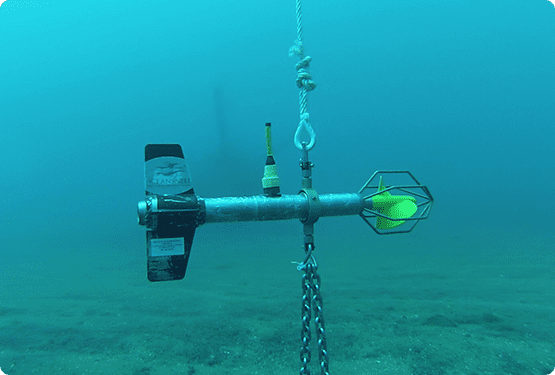 Servicios oceanográficos